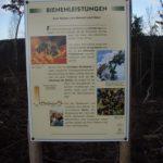 Infotafel Bienen Erlebnispfad Neusässer Wald