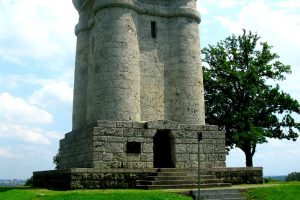 Eichenprozessionsspinner am Bismarckturm